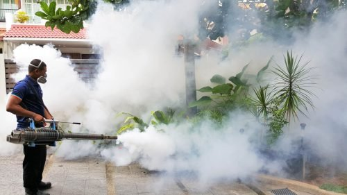 Thermal Fogging for Residential Property